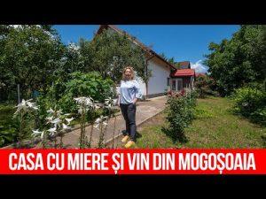 Casa cu miere și vin din Mogoșoaia